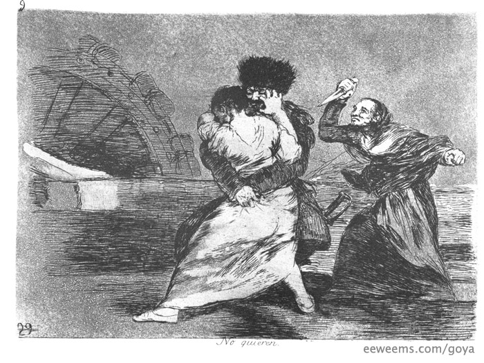 Goya They Do not Want To. The Disasters of ...